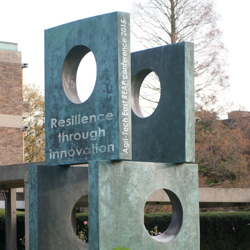 REAP 2015 Resilience Through Innovation report
