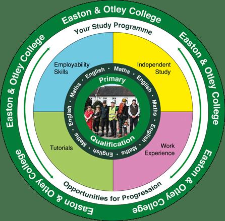 Easton Otley study programme framework, professional insights