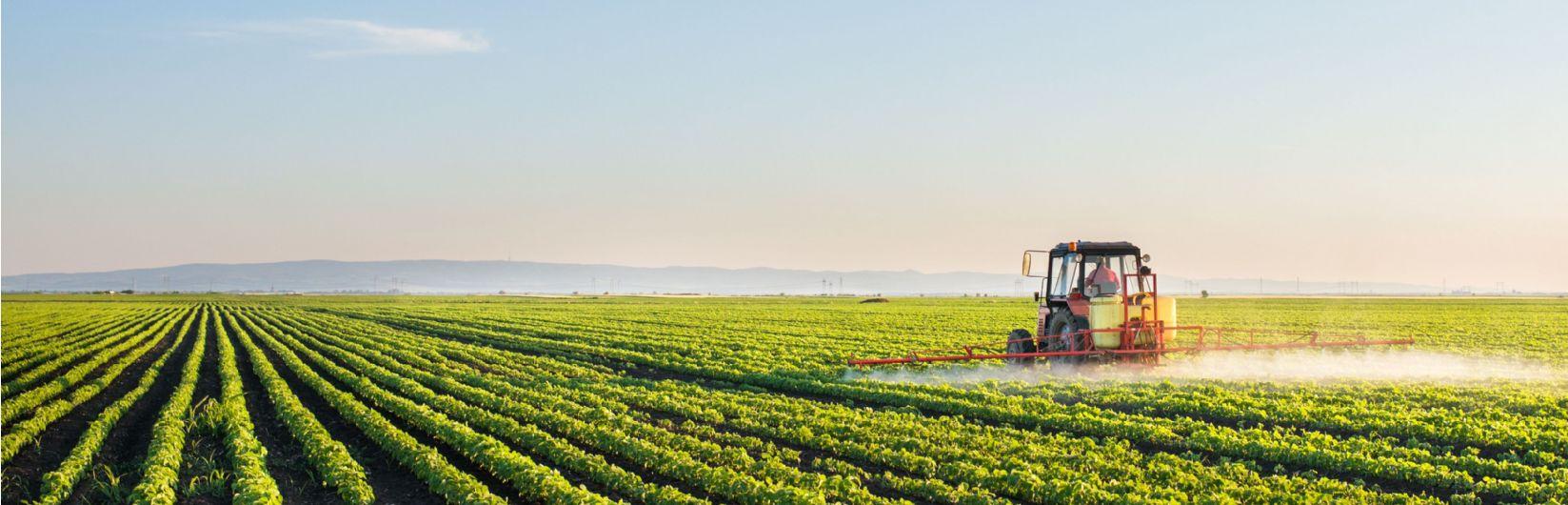 Savills Food and Farming