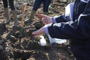 soil VESS scoring
