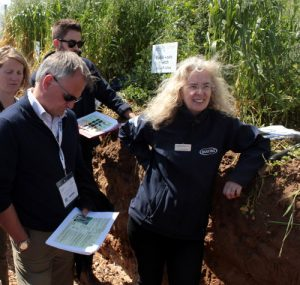 soil pit digestate project