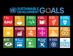 tech-for-good UN Sustainable Development Goals