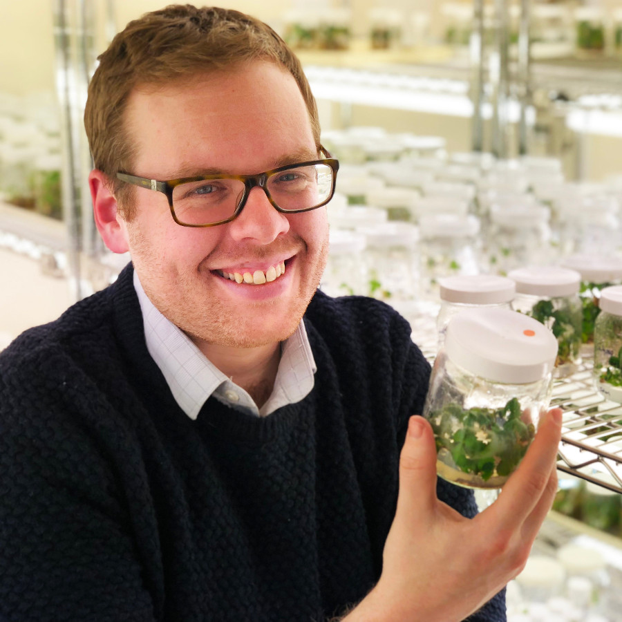 Dr Richard Harrison, Director of Cambridge Crop Research, NIAB