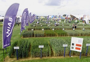NIAB at Cereals 2019