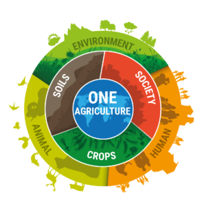 REAP 2019 - Innovating for One Agriculture