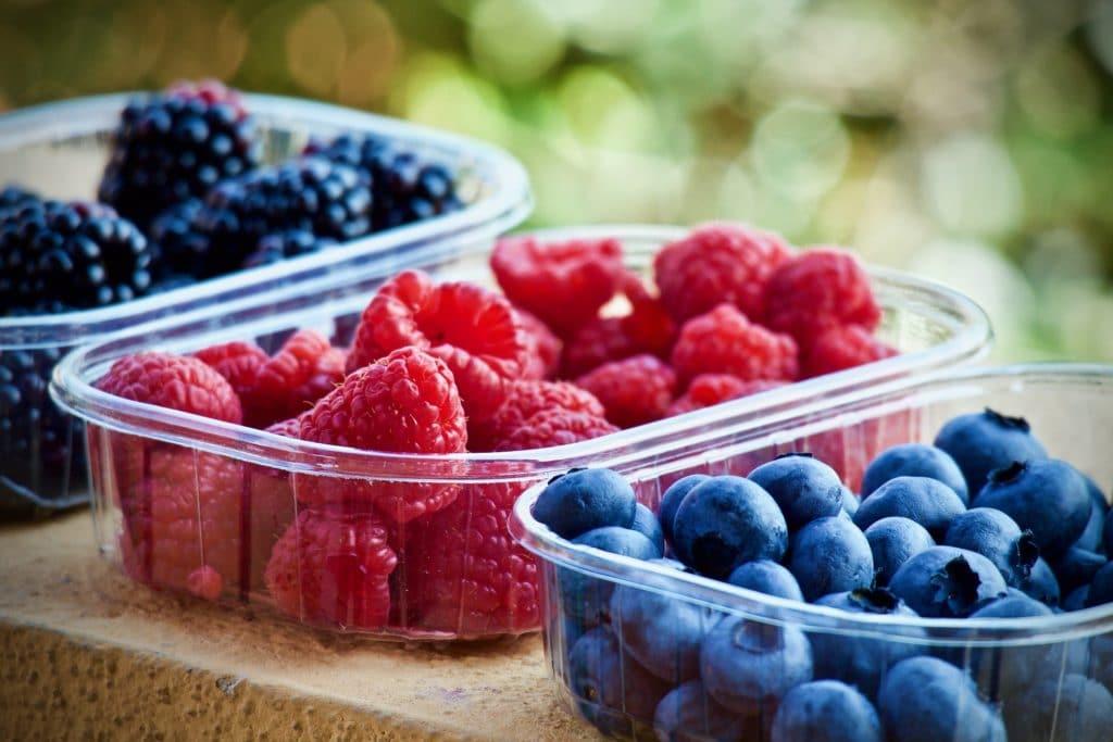 Fruit Focus Innovation Insights