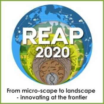 REAP 2020