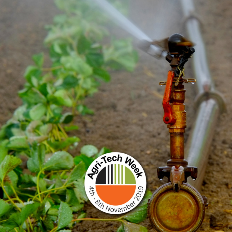 Irrigation and evaporation