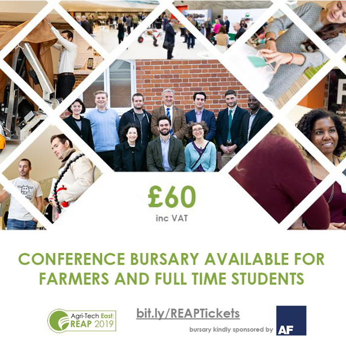 REAP Bursary square