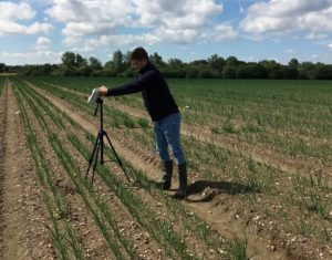 Collecting crop reflectance measurements using the FieldSpec2 (web)
