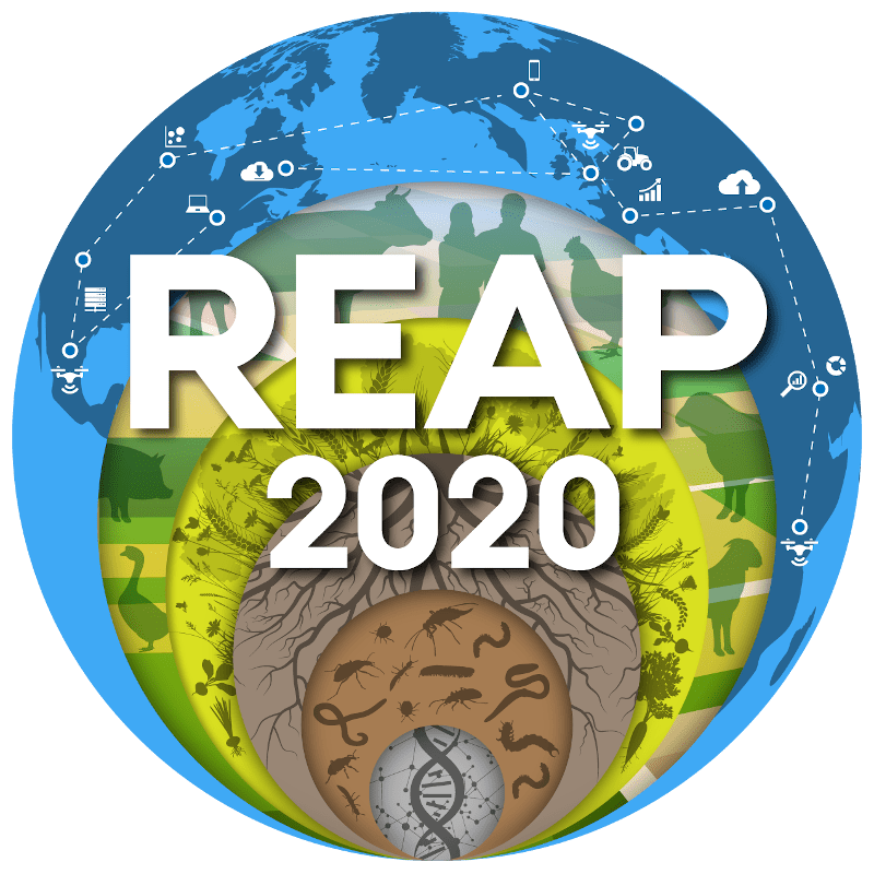 REAP Conference 2020