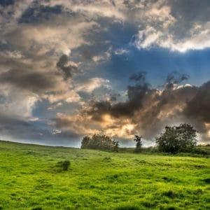 YAGRO launches new farm insurance