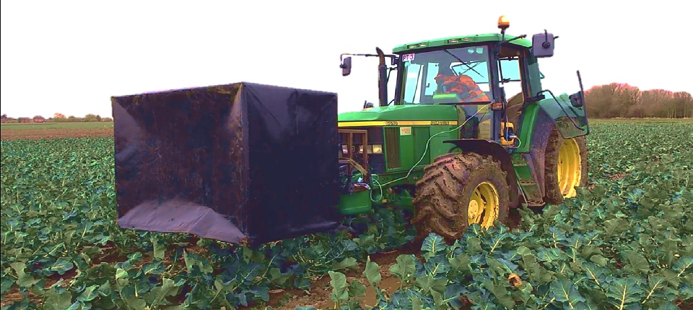 LIAT has been working on 3D imaging for broccoli harvesting