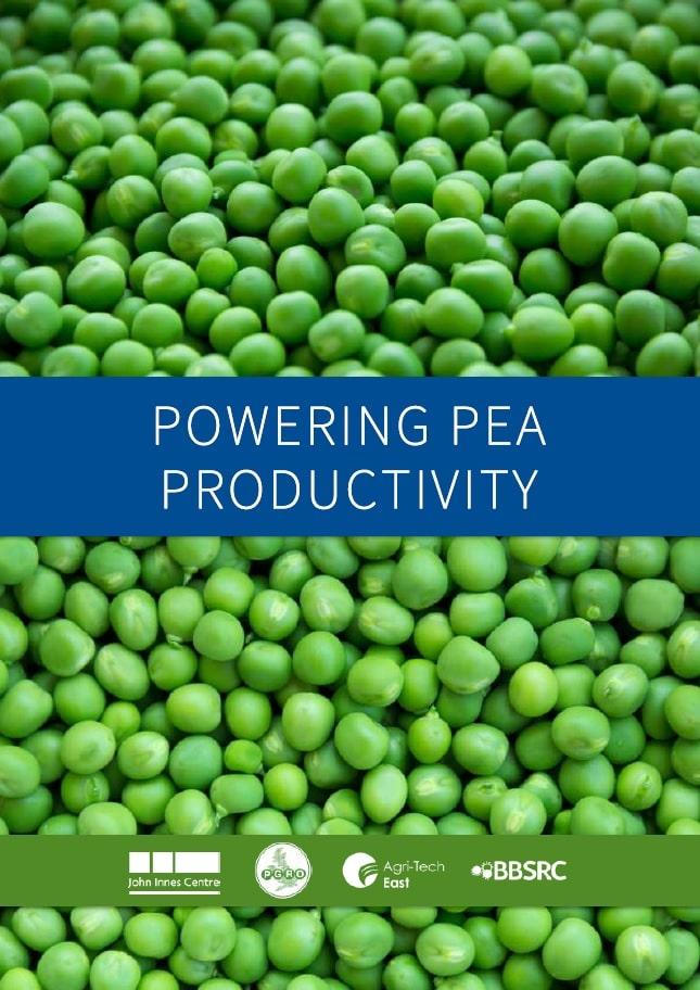 Powering Pea Productivity