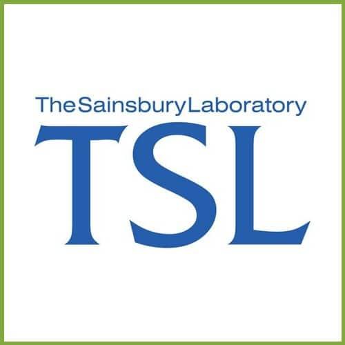 TSL - Innovation Hub 2020