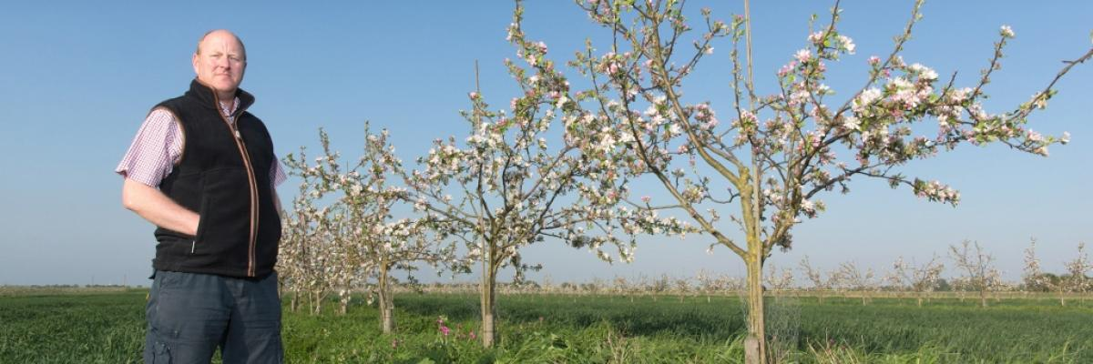 Cambridge farmer Agroforestry
