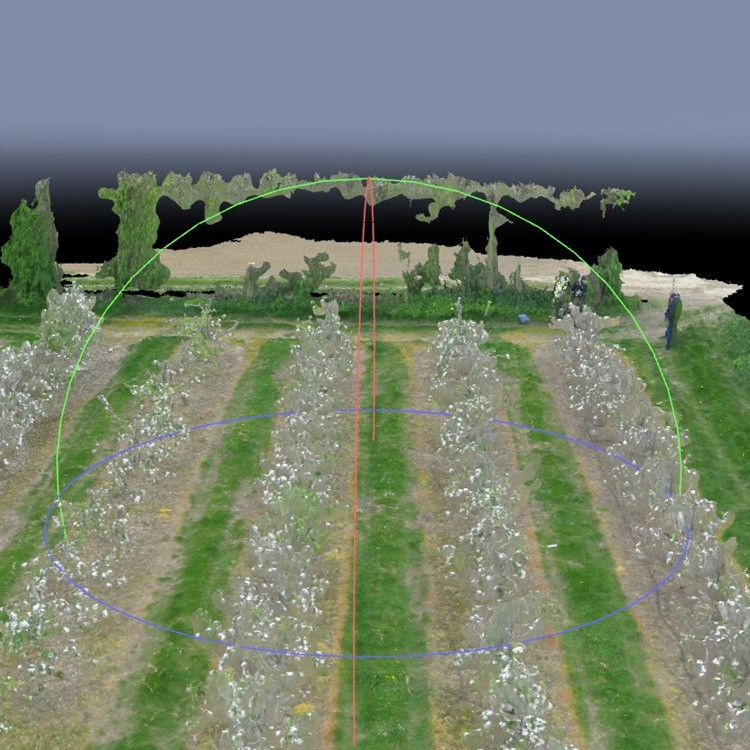 Outfield 3D orchard