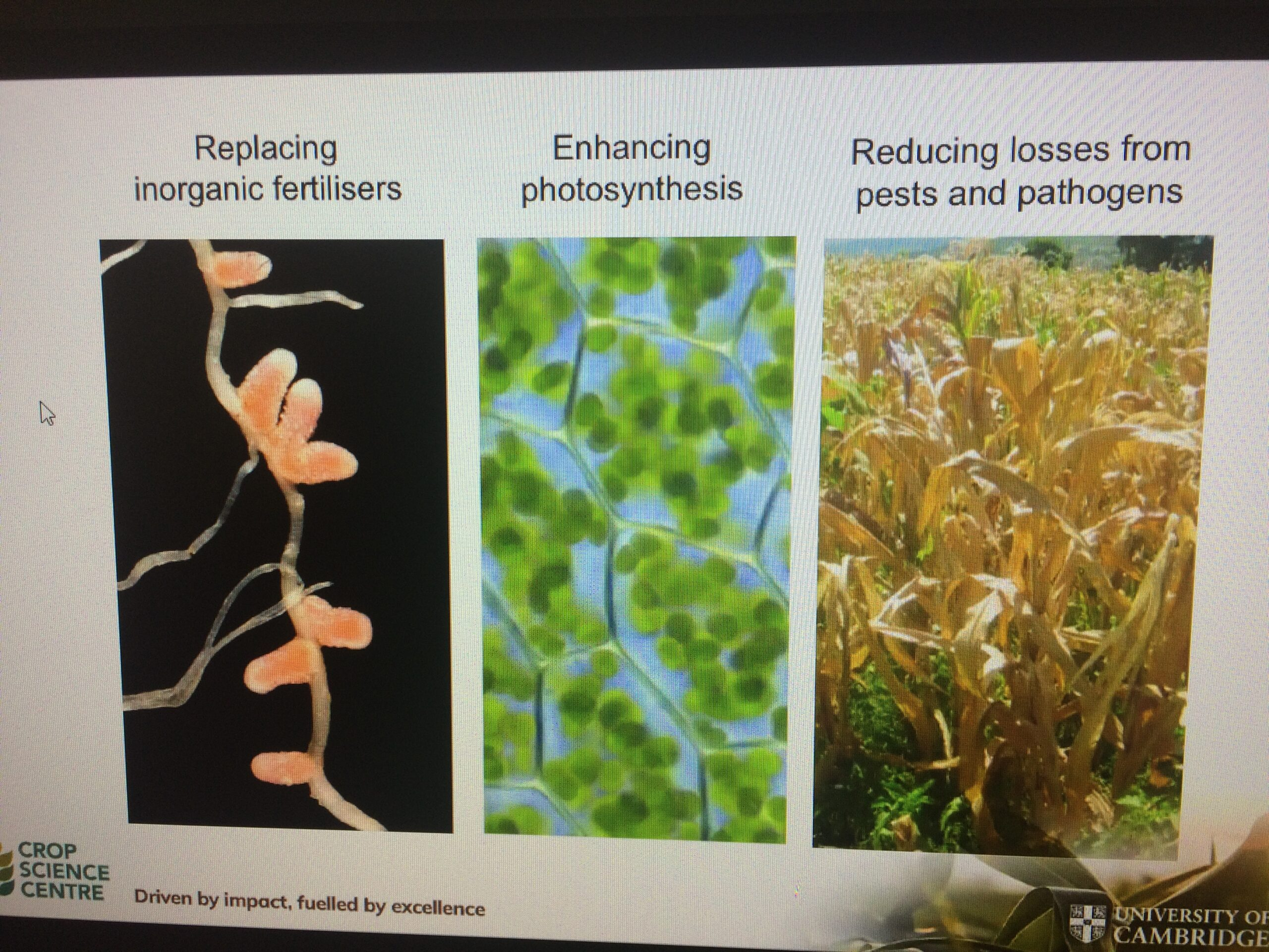 Elements of Crop Science Centre