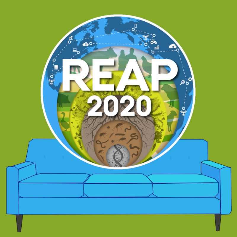 REAP 2020 Sofa session