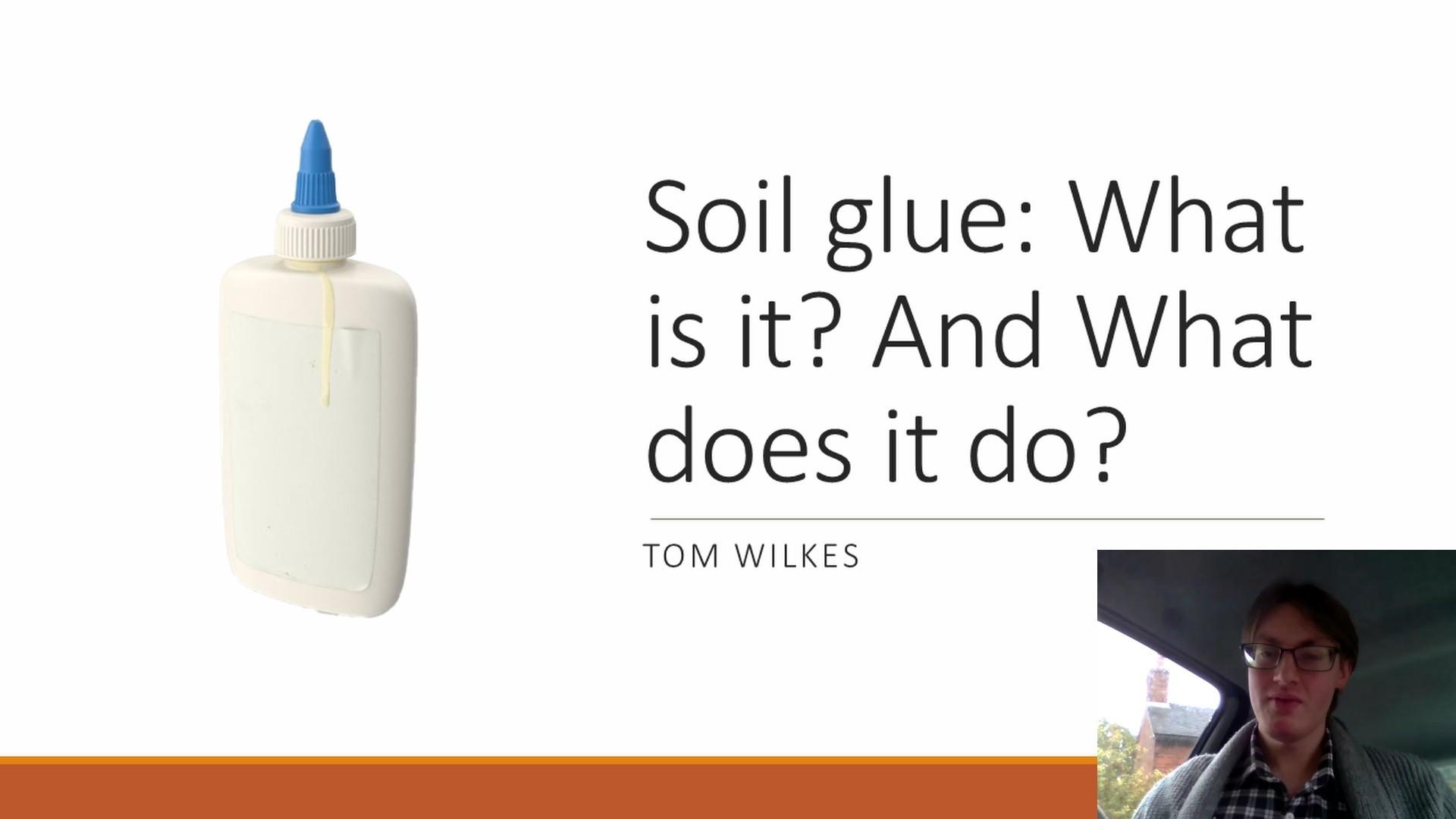 Tom Wilkes