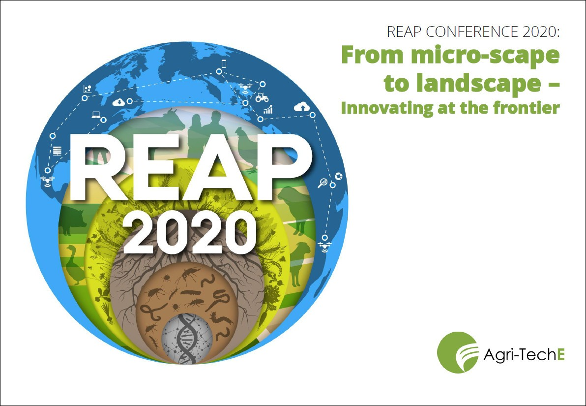 REAP 2020 report