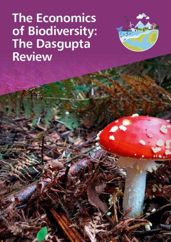 The Dasgupta Review