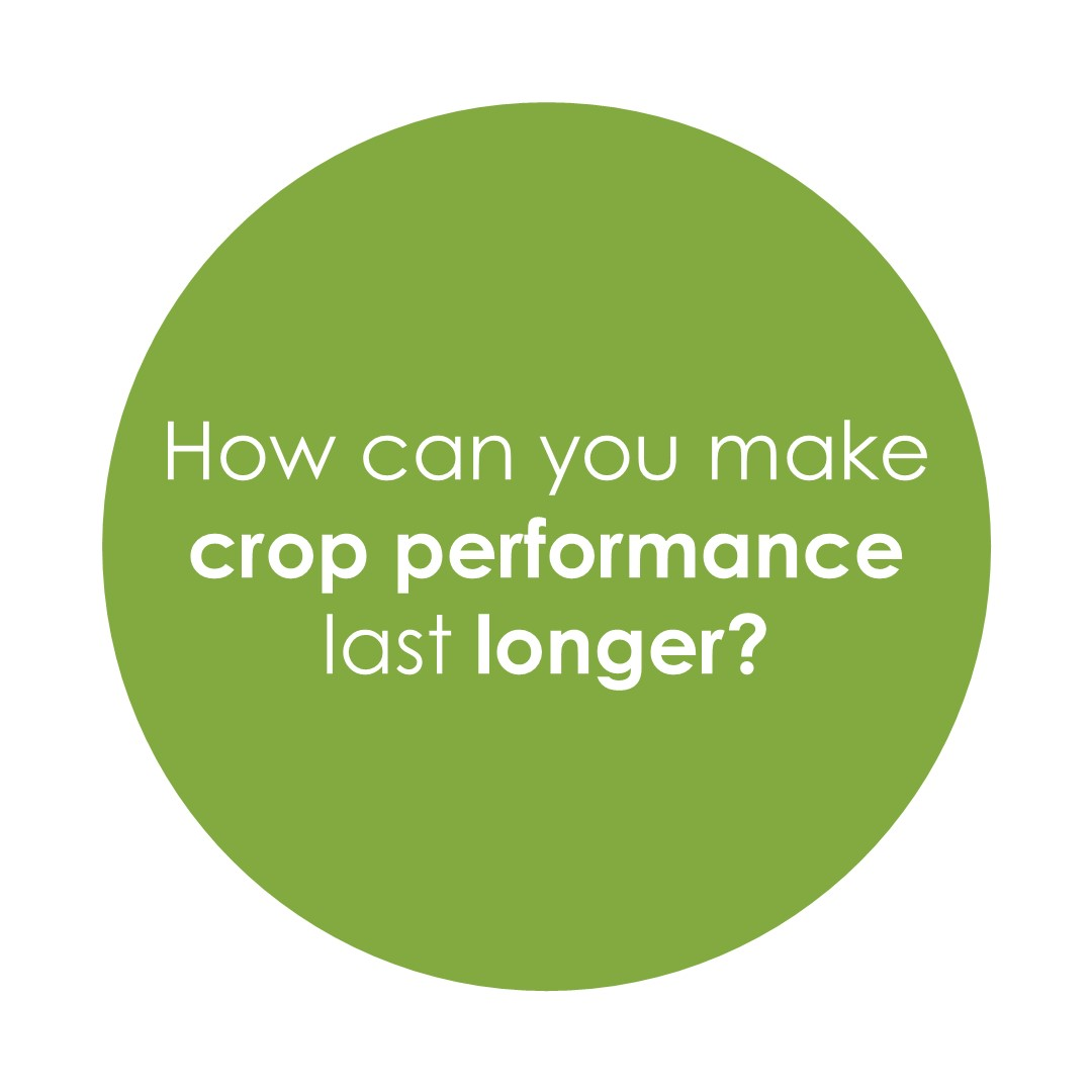 How can you make crop performance last longer?