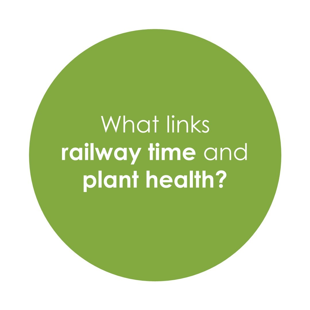 What links railway time and plant health?
