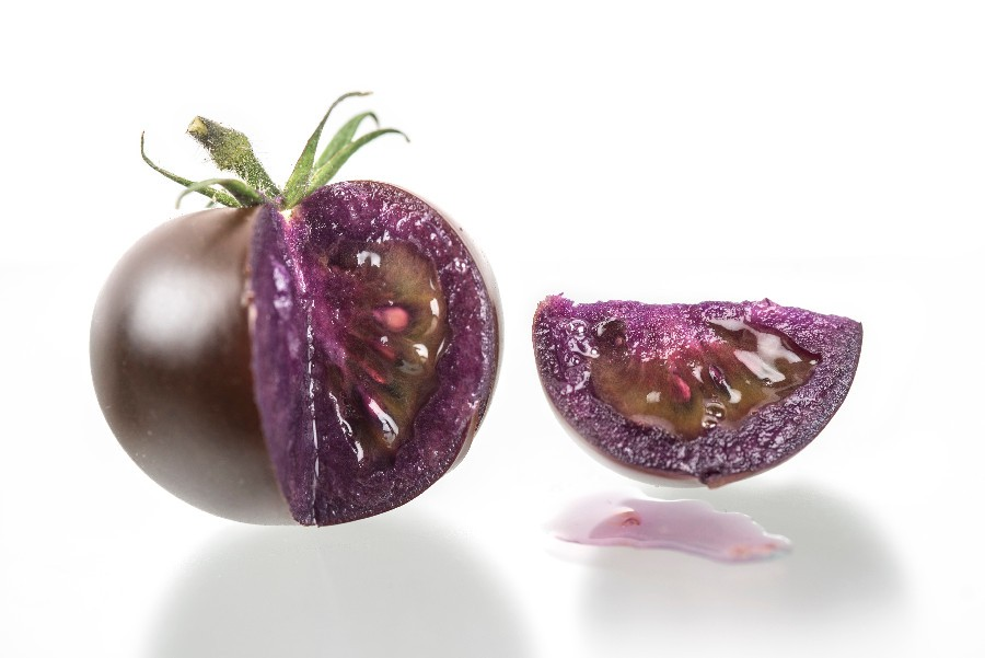 'Purple' tomato fruit genetically engineered to produce anthocyanins - JIC Photography