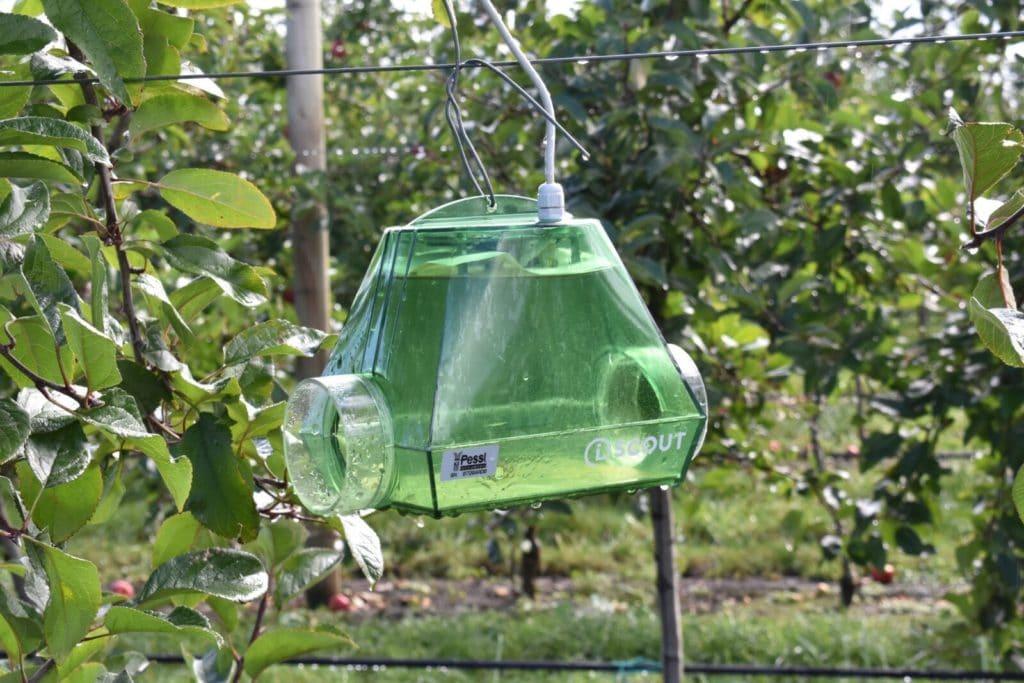 autonomous pest trap