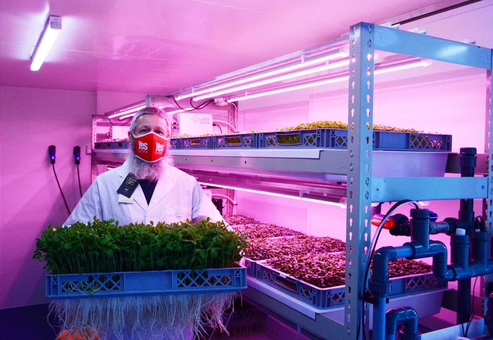 social impact vertical farming Supplied by LettUsGrow Crop Culture