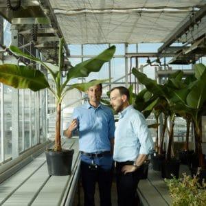novel gene editing technique from Tropic Bioscience