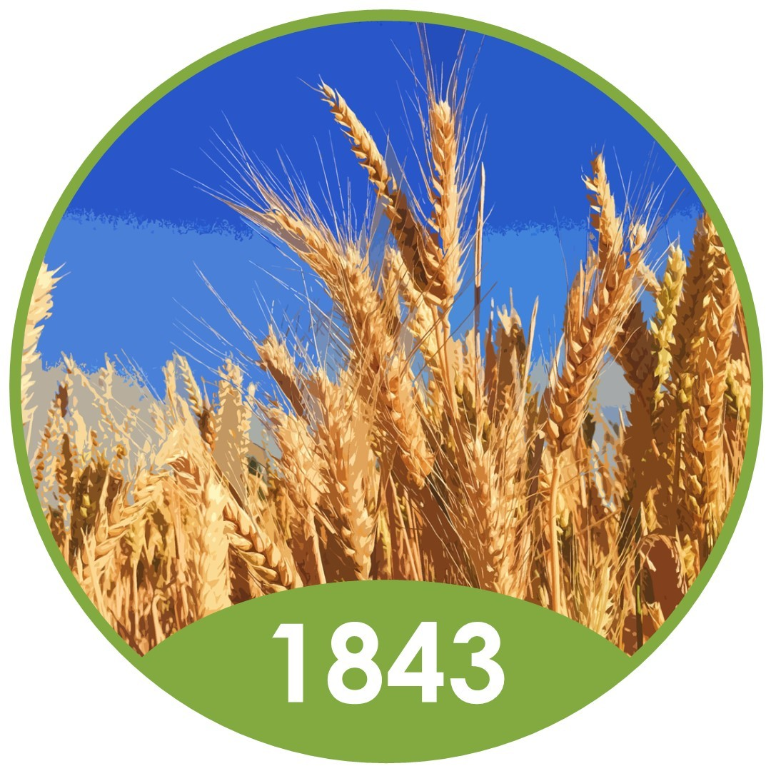 What does the longest running crop experiment tell us about Nitrogen?