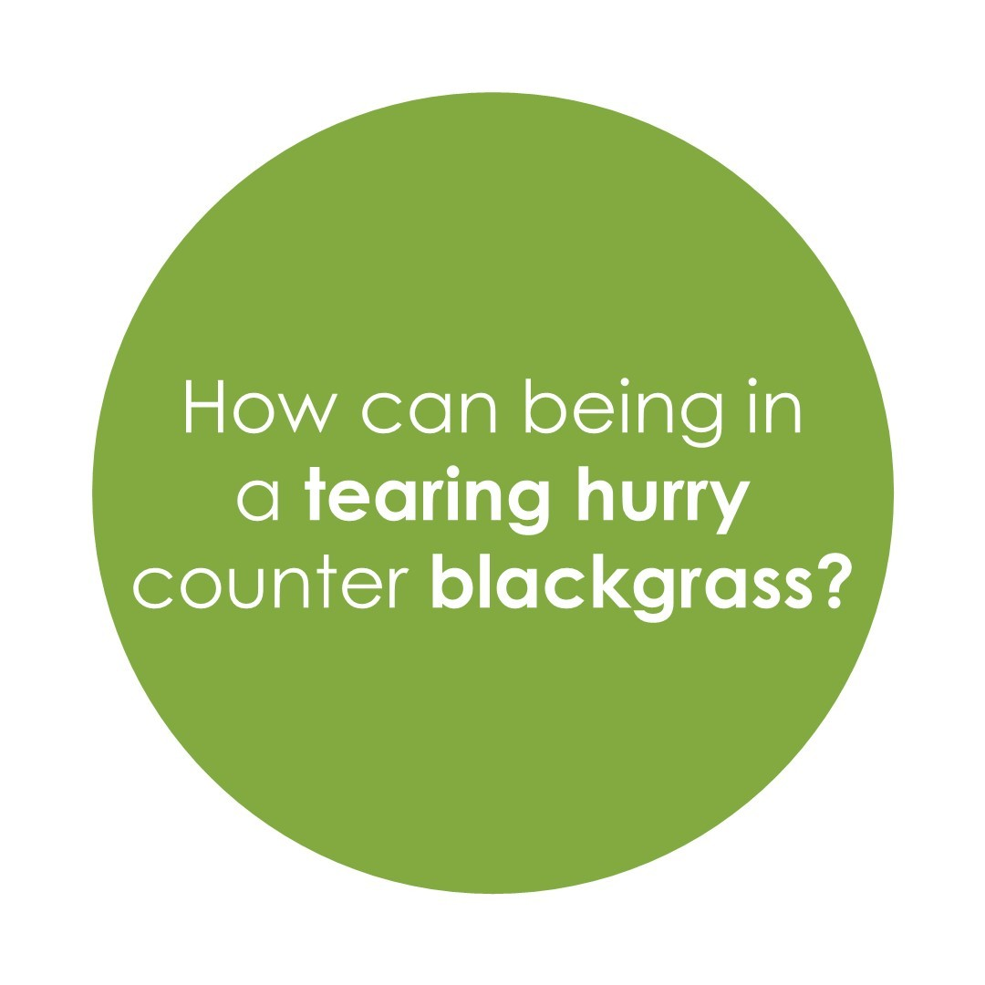 How can being in a tearing hurry counter blackgrass?