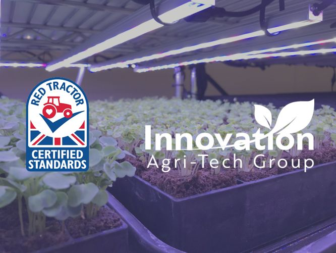 Innovation Agri-Tech Group gains full Red Tractor Fresh Produce accreditation