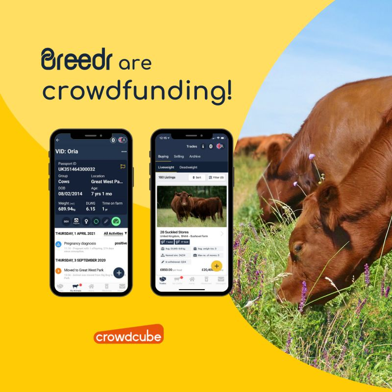 Breedr are crowdfunding