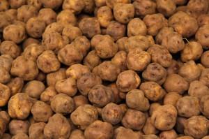 CUPGRA Potatoes