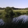 Protecting the River Wensum: land management can reduce runoff