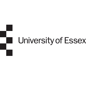 University of Essex at REAP 2017